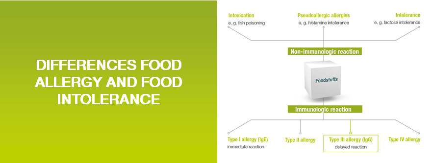Food Allergy and Intolerance Differences and Business Opportunities